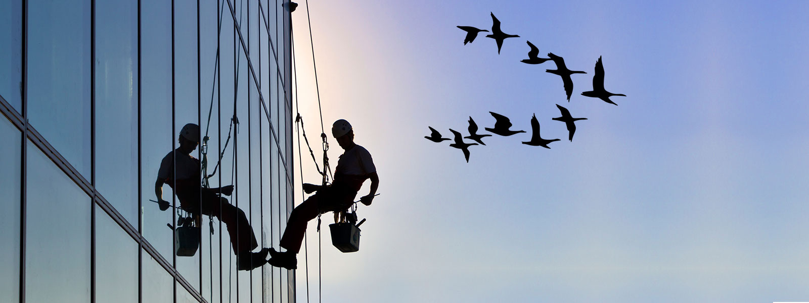 Trabajos verticales palma de mallorca frontis for Trabajos verticales en palma